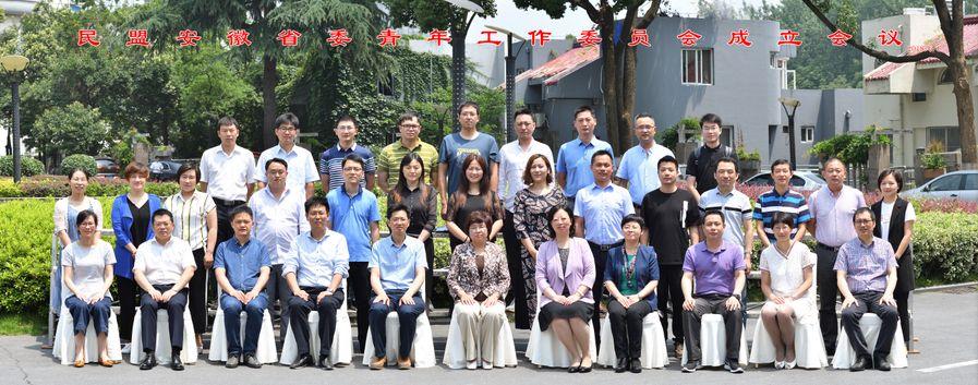 我市盟员代表参加民盟安徽省委青年工作委员会成立会议