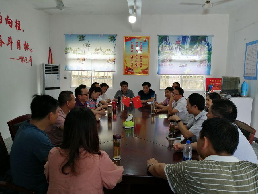 民盟安庆市委助力高质量脱贫攻坚开展民主监督工作