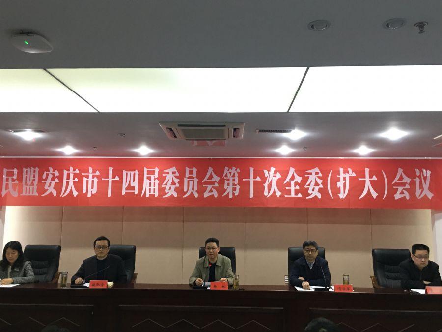民盟安庆市委召开第十四届十次全委(扩大)会议