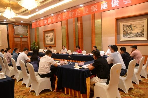 安庆民盟盟员汪姜峰参加民盟安徽省委盟员企业家座谈会